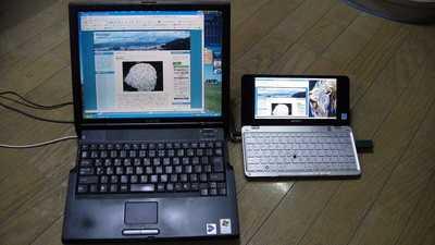 20090628typeP.jpg