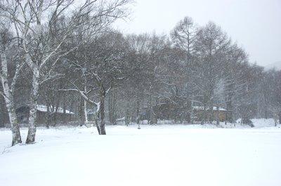 20101224snow1.jpg