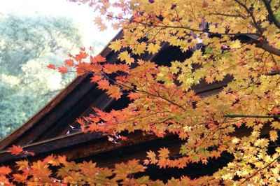20071123jyoukouji.jpg