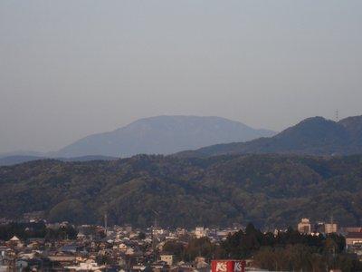 20060425ena.jpg