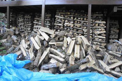 20120820woods2.jpg
