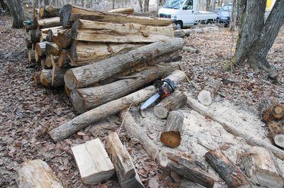 20120425woods1.jpg