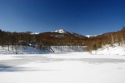 20101231himekiko.jpg