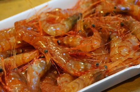 20170526shrimp