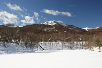 20110118himekiko.jpg