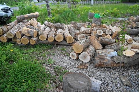 20170522woods