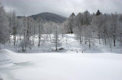 20110218hineki2.jpg