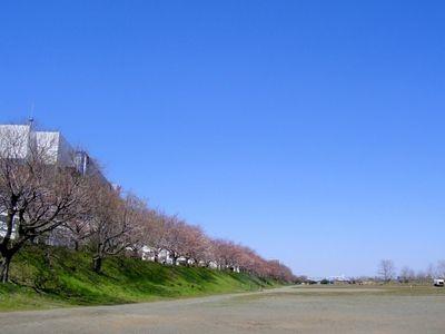 20100330kasen.JPG