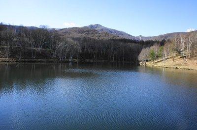 20101126himekiko.jpg
