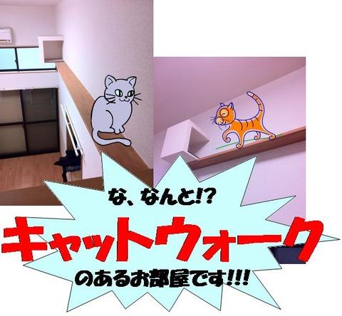catwalk大
