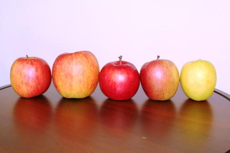 りんご全種