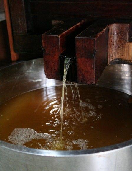 りんご酒の搾り9