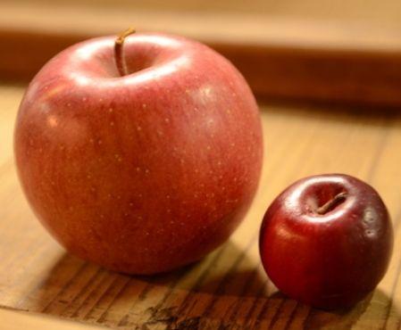 横りんご大小
