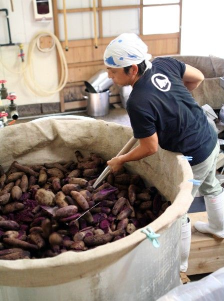 2010紅芋酢の仕込み7