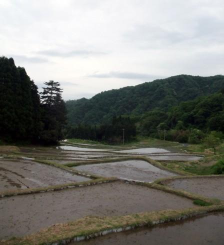 09田植え体験会