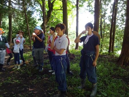 2016稲刈り体験会15