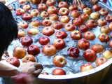 りんご洗い2