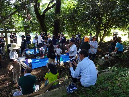 2016稲刈り体験会17