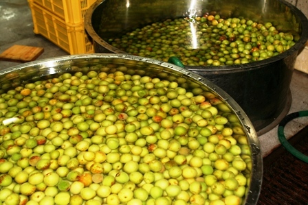 梅酢の仕込み