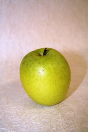 木村さんの林檎2