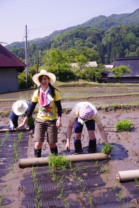 2016田植え体験会5