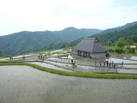2015田植え体験会16