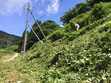松尾棚田草刈り4