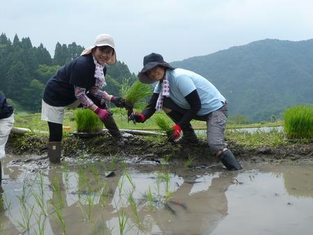 2015田植え体験会5