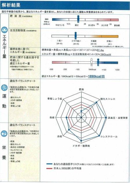 遺伝子検査結果2