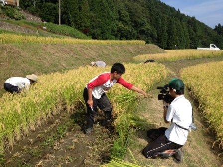 農交ネット1