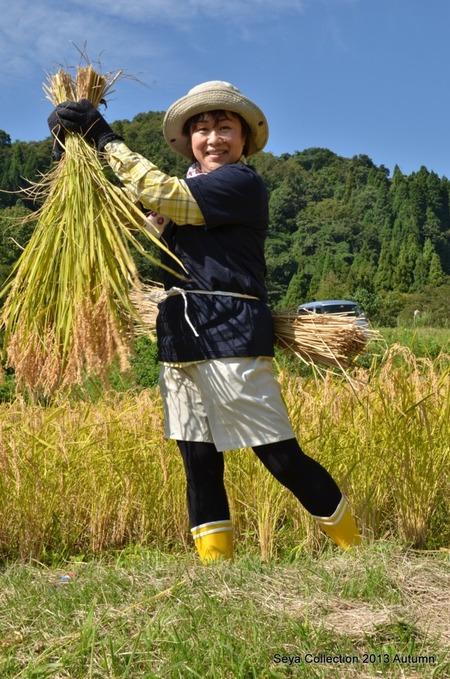 2013稲刈りファッションショー2