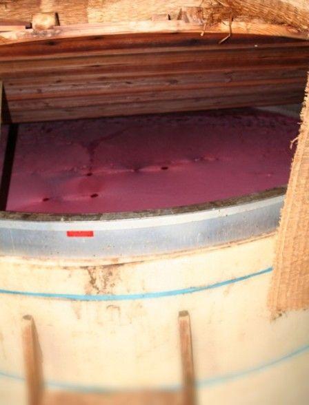 2010紅芋酢の仕込み29