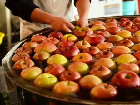 横りんご洗い