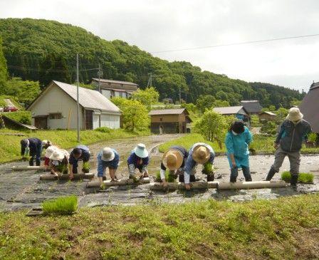 2012田植え体験会のお知らせ3
