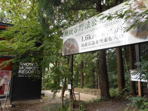 藤井荘_2155