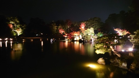 やす井_0518