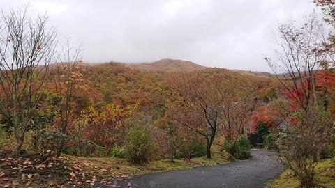 山みず木_0243