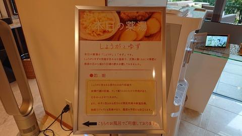 鬼怒川金谷ホテル_0250