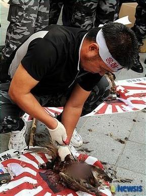 韓国人キジ殺し2