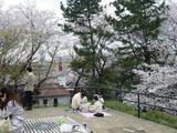 箱根山頂上