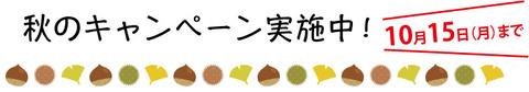 秋のキャンペーンブログ用2