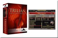 DTMで最強のおすすめベース音源はTrilianで決まり!