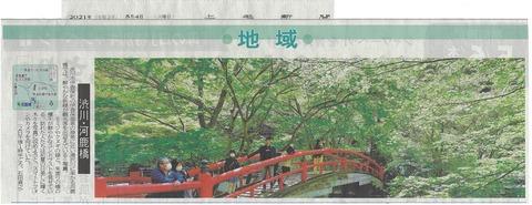 河鹿橋の新緑が見頃…