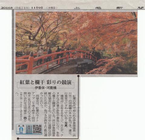 河鹿橋の紅葉が見頃です!