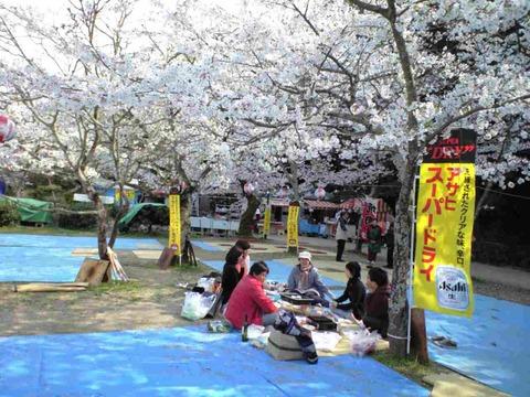 お花見道後公園