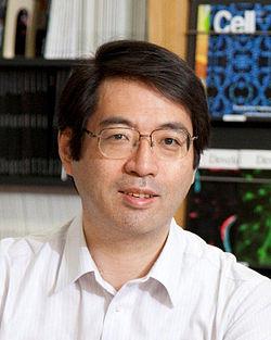 Yoshiki_Sasai,_circa_2012