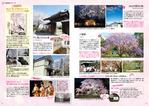 編集② 桜