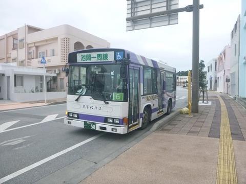 P1110110