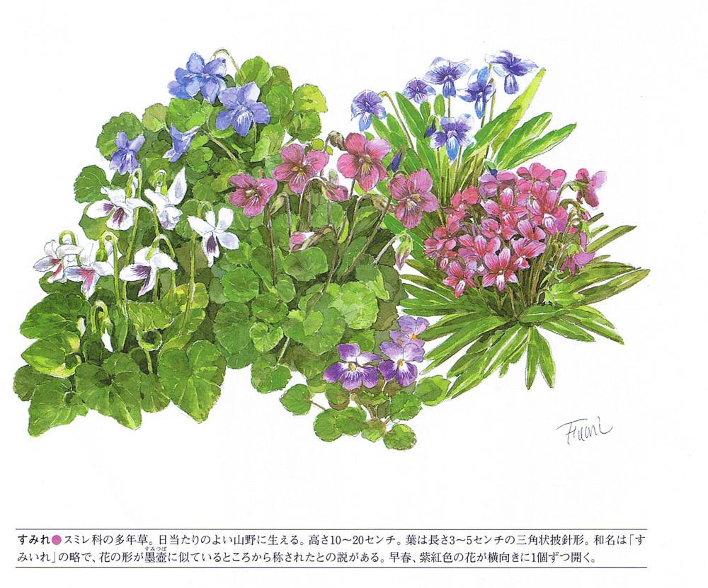 Suzuki saaya garden idea office girls wallpaper