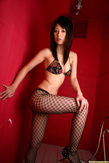collection035